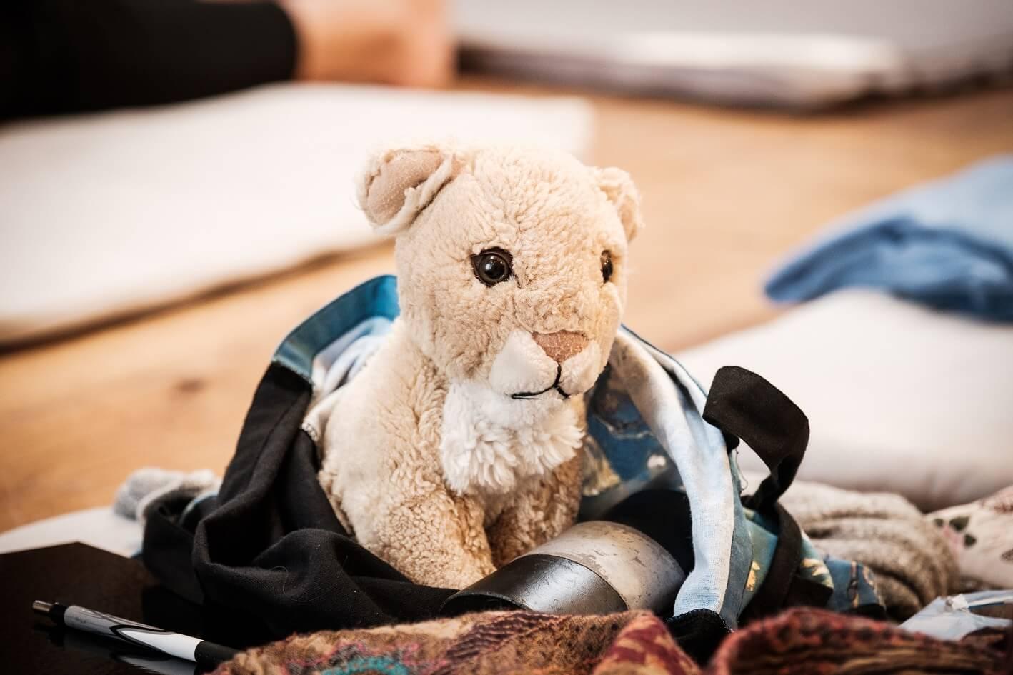 Teddybeer (verkleind)